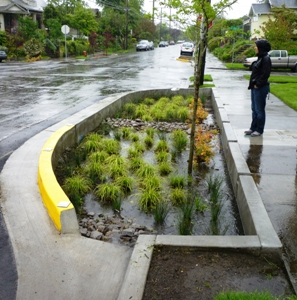 Image of stormwater curb extension